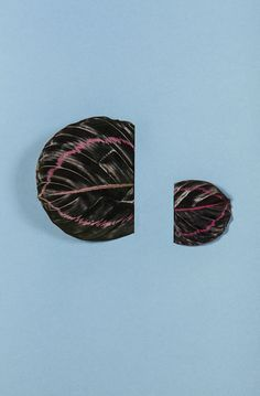 Raw Color crée des compositions graphiques abstraites et colorées en n'utilisant que des feuilles et des feuilles.