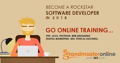 Become a rockstar software developer in 2018.