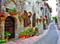 Our Geranium Stroll Outdoor Canvas Art features a stone pathway with vibrant and beautiful geraniums. Waterproof, UV protected and gallery wrapped outdoor art. Outdoor Art, Indoor Outdoor, Outdoor Decor, Italy Street, Red Geraniums, Decoration Originale, Wall Murals, Wallpaper Murals, Usa Wallpaper