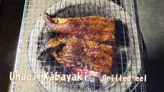 Kabayaki is grilled eel. Unagi Kabayaki is very good Japanese food.