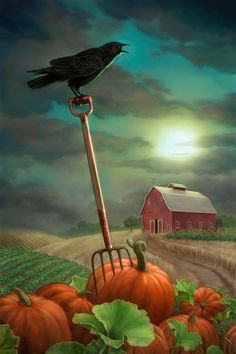 Are you ready for Halloween? Listen to the crow reminding you to harvest the pumpkins - print: To Buy The Farm by allendouglasstudio Halloween Painting, Holidays Halloween, Vintage Halloween, Halloween Crafts, Happy Halloween, Halloween Decorations, Halloween Scene, Samhain Halloween, Halloween Night