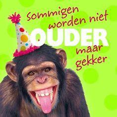 jarig grappig Super grappige kaart met een aap. Grappige verjaardagskaarten  jarig grappig
