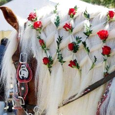 Mane diamond braid with red roses