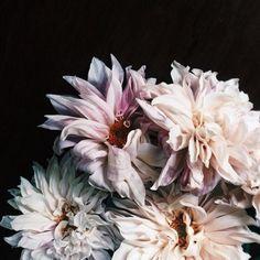 undefined floral inspiration for wedding: The Lane #stylingmrsoliver.com