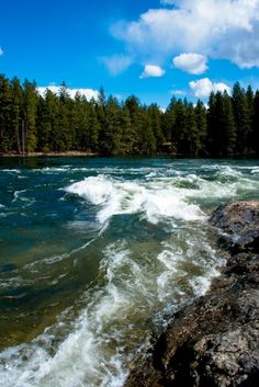 Spring run-off Spokane River, Corbin Park, Post Falls Idaho.