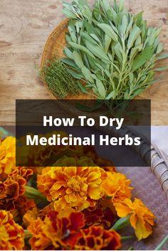 Drying Medicinal Herbs