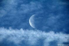 Moon Love Moon, Celestial
