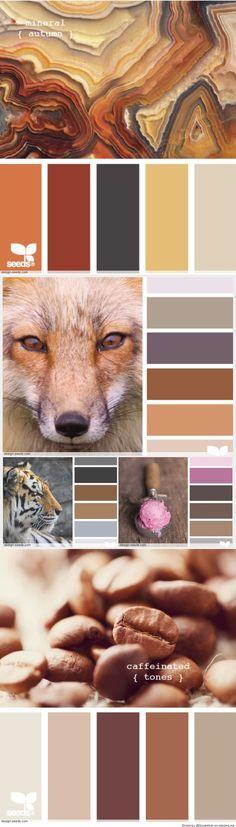 Color Palettes More
