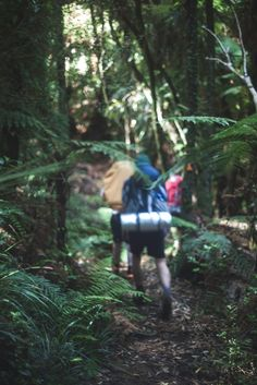 Our couple of days being stuck in the mud. Pirongia summit via Bell & Tahuanui Tracks Pirongia Forest Park Waikato New Zealand. #hiking #camping #outdoors #nature #travel #backpacking #adventure #marmot #outdoor #mountains #photography