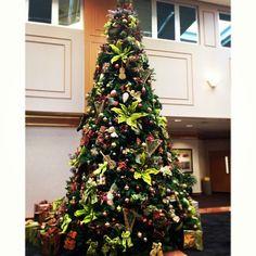 EUH Christmas tree.