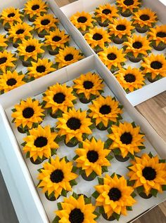 Sunflower cupcakes, anyone? Tag a sunflower lover! Sunflower Cupcakes, Bee Cupcakes, Sunflower Party, Sunflower Baby Showers, Buttercream Cupcakes, Buttercream Flowers, Cupcake Cakes, Vanilla Buttercream, Piping Buttercream