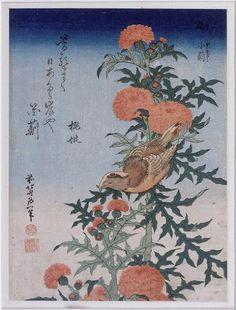 Katsushika Hokusai. Crossbill and thistle. 1834. edo period.