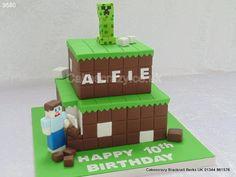 Minecraft Cake  http://www.cakescrazy.co.uk/details/minecraft-cake-creeper-steve-cake-9580.html