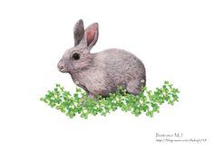 토끼와 클로버 수채화 일러스트