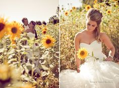 pretty.. can have bill goode take engagement photos in the sunflower fields on the familys farm