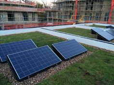 Solar panels and Green Roof - Perfect Combination! Eco Green Roofs