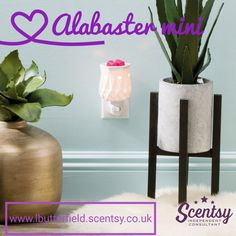 Here's something a little different.....  Scentsy A-Z scentsy everyday till we get to z So today is A .... Alabaster warmer and baby mini warmer ❤❤  #scentsyAtoZ #everyday #leannesmellsthescent #flamelessfragrance #alabaster #warmer #mini