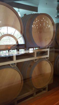 Wine in barrels at ZD