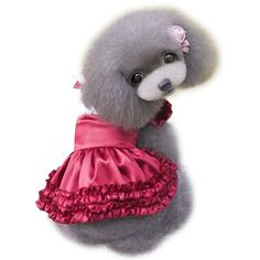 NACOCO(TM) Lolita Style Satin Cloth Pet Clothes Dog Dress the Spring and Autumn Clothes Teddy Clothes Princess Dress -- To view further, visit now : Dog Apparel and Accessories