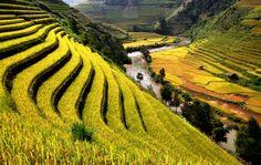 Lua-de-mel no Vietname