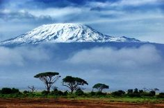 Safaris can be expensive but luckily you can find a bungalow or similar lodging in Kilimanjaro Natio... - Thinkstock