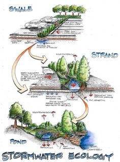 "Virginia Tech Stormwater - gathering ideas and ""wish lists"" for the Upper New River watershed Sustainable Architecture, Sustainable Design, Landscape Architecture, Urban Landscape, Landscape Design, Garden Design, Urban Mapping, Planer Layout, Ecology Design"