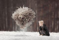 モップ犬(コモンドール)と少年がはしゃぐ写真がまるでファンタジーの世界 - Togetterまとめ