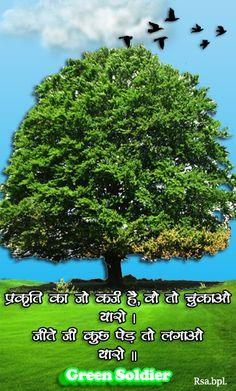 Save Tree Save Earth, Herbs, Green, Herb, Medicinal Plants