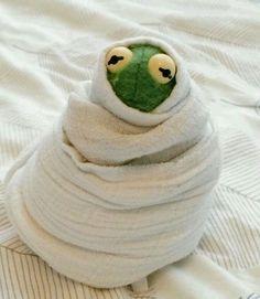 𝚕𝚊𝚣𝚢 𝚔𝚎𝚛𝚖𝚒𝚝 & 🐸☕️ The post 𝚕𝚊𝚣𝚢 𝚔𝚎𝚛𝚖𝚒& appeared first on Kermit the Frog Memes. Sapo Kermit, Les Muppets, Sapo Meme, Memes Lindos, Meme Template, Me Too Meme, Wholesome Memes, Mood Pics, Meme Faces