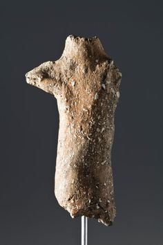Most ancient pottery prehistoric figurine of the Iberian Peninsula found in Begues