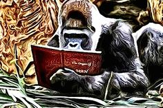 #Read about Guest #Author Nicki Chen | Chris The Story Reading Ape's Blog..... An Author Promotions Enterprise!