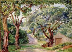 Cork Trees at Cintra near Lisbon (1870s) - Marianne North
