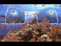 Poseiden, underwater excellence.