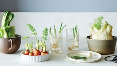 10 Easy Ways to Waste Less. Use these ideas to save money and produce less waste around your home.