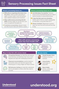 Sensory Processing Issues Fact Sheet Why do some kids struggle with sensory processing issues? Read this fact sheet or print it out and give it to teachers, family members and others. Sensory Disorder, Sensory Processing Disorder, Sensory Diet, Sensory Issues, Autism Facts, Adhd Facts, Sensory Therapy, Adhd Strategies, Behavior Interventions