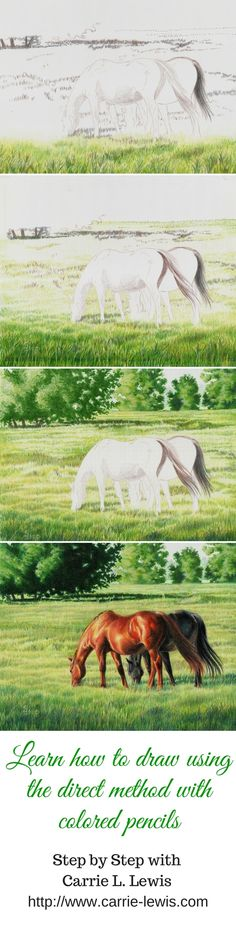 Learn how to draw this with colored pencil with Colored Pencils The Direct Method Step by Step book.