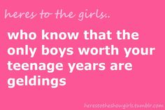 "Who ""knew"" that the only boys worth my teenage years are geldings!"