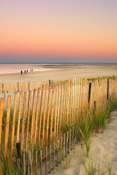 Cape Cod MA ... Forty miles of sandy beach!