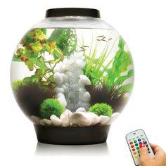 biOrb Classic 30L/8G All-in-One Acrylic Aquarium Kit with Multicolor Light - Black (45687)