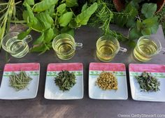 Do you grow herbs for tea? Here are nine herbs to grow for making your own hot or cold tea. Includes tips for brewing fresh or dried herbs for tea. Do you grow herbs for tea? Growing Tea, Growing Herbs Indoors, Growing Vegetables, Herbal Plants, Medicinal Herbs, Herbal Teas, Flower Yellow, Tea Plant, Homemade Tea