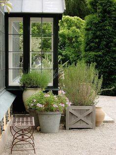 Garden Gorgeousness: Lavender is always a classic garden staple.