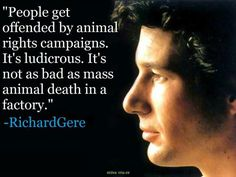 Animal rights quote by Richard Gere (beauty and brains). Vegan Memes, Vegan Quotes, Vegetarian Quotes, Vegan Facts, Animal Rights Quotes, Animal Quotes, Richard Gere, Why Vegan, Stop Animal Cruelty