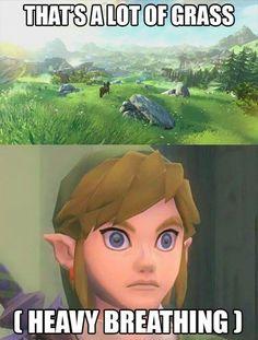 Funny Legend of Zelda Pictures (11)