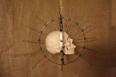 https://www.etsy.com/uk/listing/215011792/skull-not-included-craniometer-real?ref=shop_home_active_1