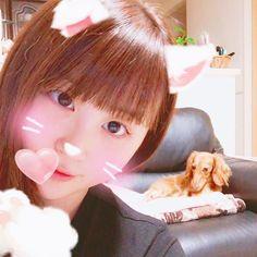 癒しのひと時💗 #pet #dog #小型犬 #家族 #愛犬 #京都生まれ #1月11日生まれ #1歳 #カニンヘンダックス #ダックスフンド #ロングコート #gold #女の子 #雌 #胴長部 #愛犬家 #天使 #親バカ #セレブ犬 #なんちゃって