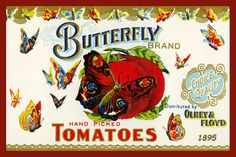 Butterfly Tomatoes Canning Label 1895. Quilt Block printed on cotton. Ready to sew.  Single 4x6 block $4.95. Set of 4 blocks with pattern $17.95.