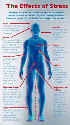 #Infographic: The Effects of #Stress. Physical or mental stresses may cause physical #illness as well as mental or emotional problems. Here are parts of the body most affected by stress.
