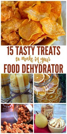 Do you have a food dehydrator? Did you know you can make more than jerky with it? Here are some great ideas and recipes to try in you food dehydrator that will give you some great snack options