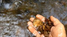 Alluvial Gold Prospecting -  The Best Places to Find Gold in a Creek - How to Get Gold - YouTube