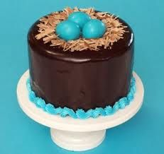 chocolate birds nest cake but with birds instead of eggs